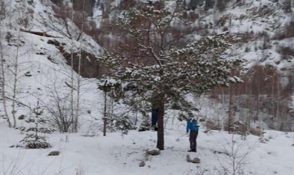 Алматы тауларында әйелдің мүрдесі табылды